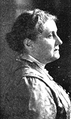 a biography of jane addams the american settlement activist Jane addams: a short biography she was a member and founder of the settlement house movement along with her companion ellen starr, addams founded the hull house, which is located in chicago jane addams was a writer in the american pragmatist tradition.